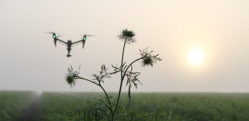 Cutting through the hype: what you really need to know about Agriculture 4.0