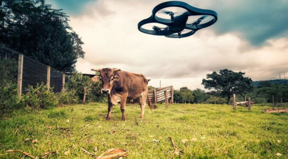 To share or not to share? That is the (AgTech) question…